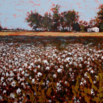 Cotton Fields Down Home